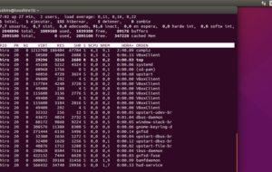 Come avviare e utilizzare i servizi sui server Linux? 7