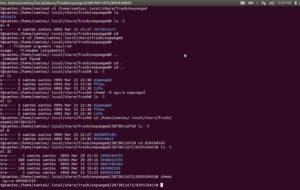Come capire i permessi di Chmod in Linux? 24