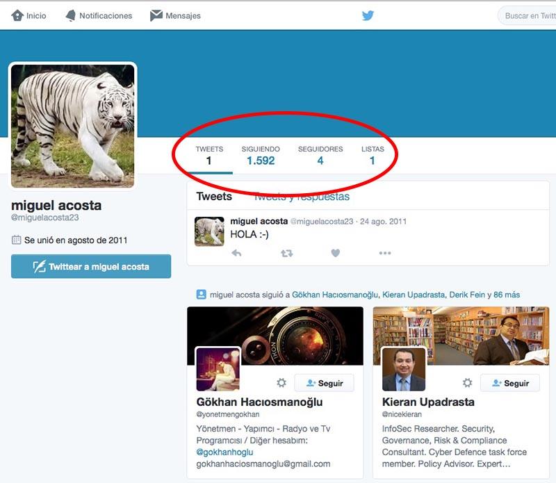Come sapere se un account Twitter è falso 2
