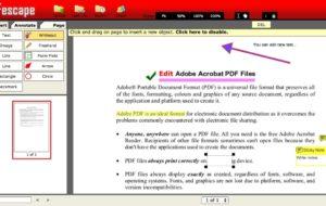 Come compilare moduli PDF senza software? 17