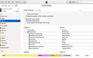 Come sincronizzare la mia musica su iTunes? 13