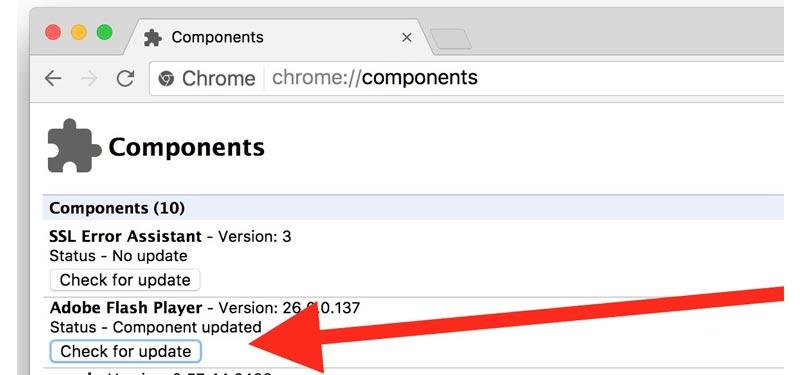 Come aggiornare Adobe Flash Player veloce e gratuito? Guida passo passo 3