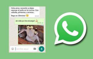 Le migliori battute da inviare su WhatsApp 30
