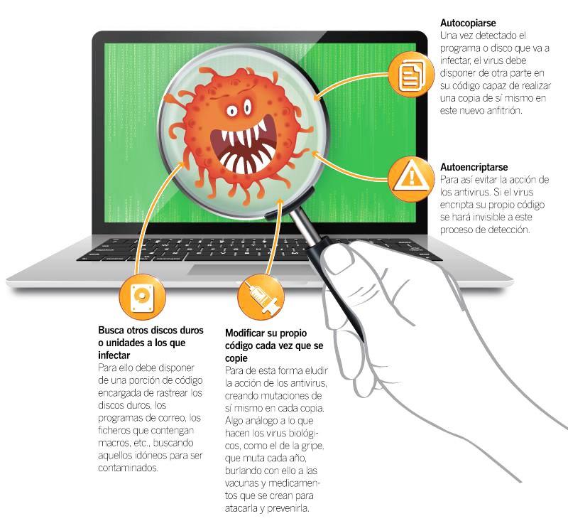 Virus informatici Cosa sono, quali tipi esistono e quali sono i più famosi e pericolosi? 3