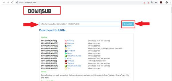 Come scaricare ed estrarre i sottotitoli da un video di YouTube? Guida passo passo 3