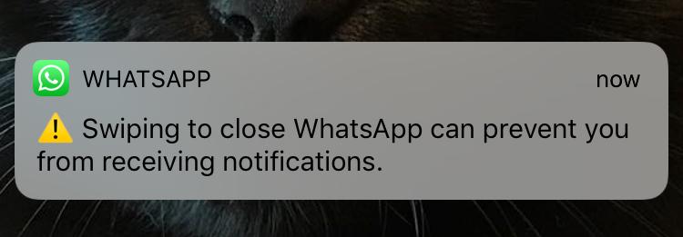 Scorri per chiudere WhatsApp, come utilizzare questa funzione? 1