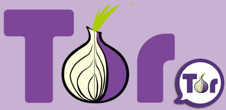Cos'è il browser Tor anonimo, come funziona e come installarlo correttamente? 1
