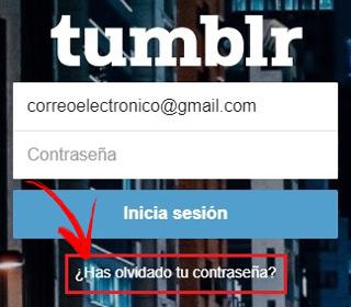 Come accedere a Tumblr in spagnolo in modo facile e veloce? Guida passo passo 10