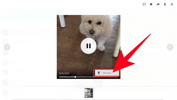 Come scaricare i video di WhatsApp Messenger sul tuo computer Windows e Mac? Guida passo passo 6