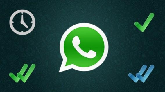 Come risolvere la mancata condivisione su WhatsApp 2