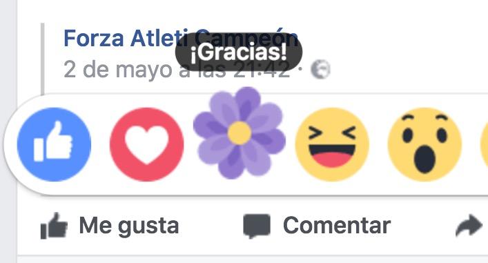 Come avere la reazione di Flor su Facebook 1