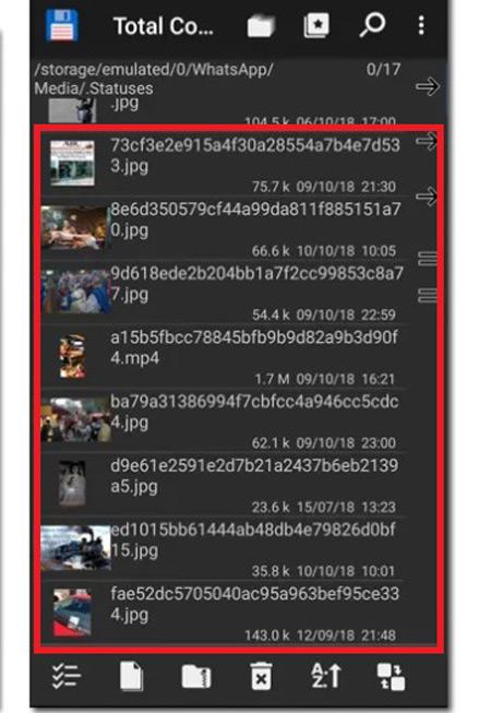 Come scaricare i video di WhatsApp Messenger sul tuo computer Windows e Mac? Guida passo passo 8