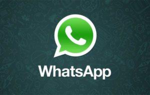 WhatsApp Plus: chi è online? 25