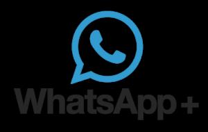 Qual è meglio, WhatsApp Plus o WhatsApp normale? Risolviamo il dubbio 36