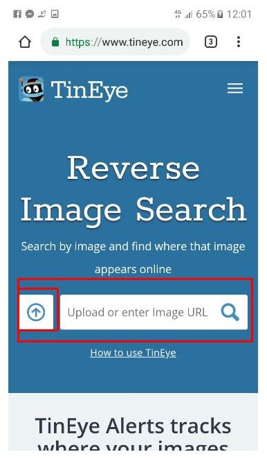 Come cercare un'immagine su Internet? Guida passo passo 7