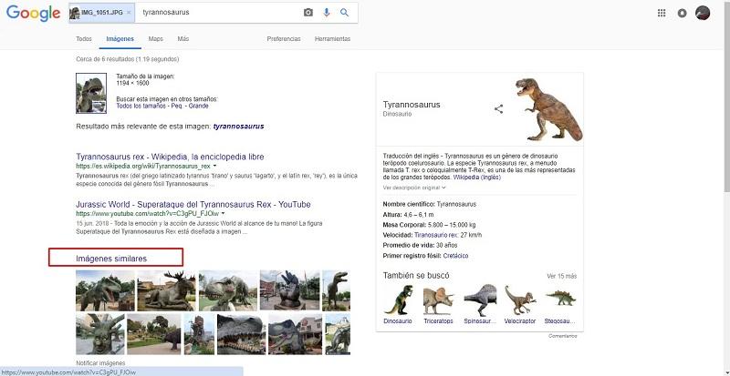 Come cercare un'immagine su Internet? Guida passo passo 4