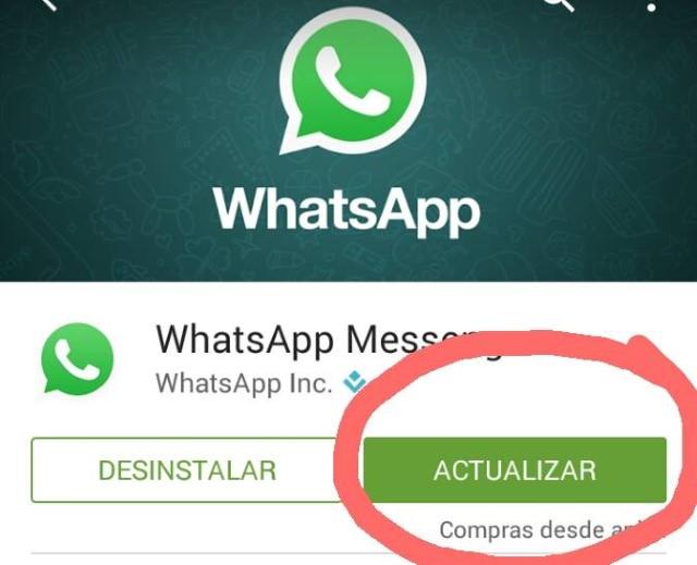 Come vedere gli stati dei miei contatti in WhatsApp? 3