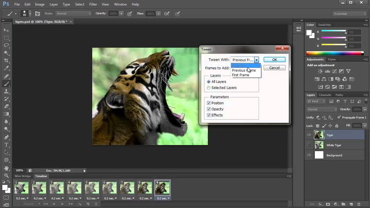 Come creare una GIF animata da un video su PC usando Photoshop CC 2