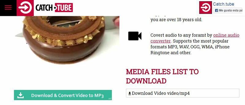 Come scaricare video da Pinterest per guardarli in seguito senza essere connessi a Internet? Guida passo passo 4