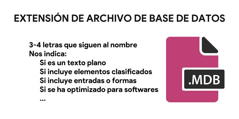 Formato file: cos'è e quali sono questi standard per l'identificazione dei documenti? 8