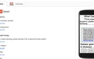 Che cos'è e come utilizzare Google Page Speed Insights? 22