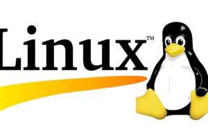 Come creare Multiboot su diverse distro Linux? 13