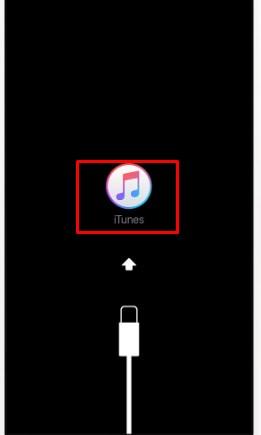 Come ripristinare iPhone 6 e ripristinare le impostazioni di fabbrica del telefono? Guida passo passo 6